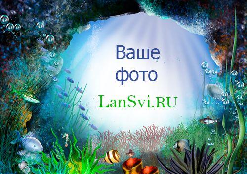 Подводный мир онлайн рамка